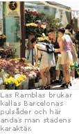 nr2_barcelona_1